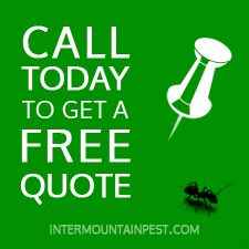 Call now to get a free quote for pest control services in the boise area or mccall area